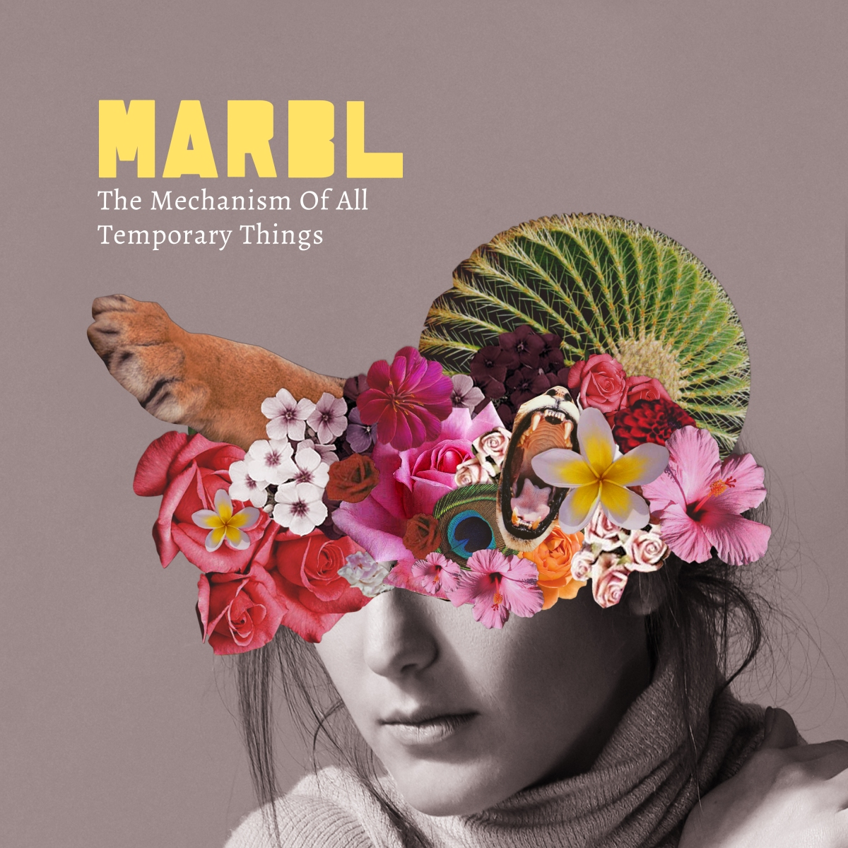 The Mechanism of All Temporary Things  - MARBL (reviewed by Dave Franklin)